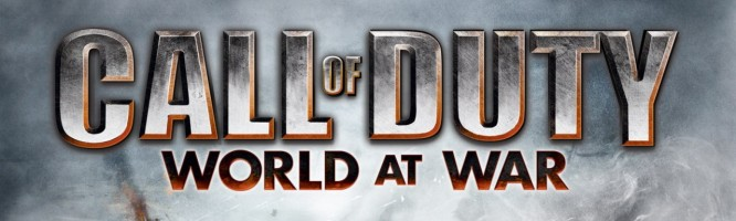 Call of Duty : World at War - DS