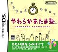 Nintendo DS Logic Puzzles - DS
