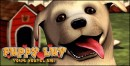 Puppy Luv : Votre Nouvel Ami - DS