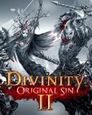 Divinity : Original Sin II - PC