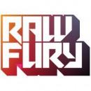 Raw Fury - Société