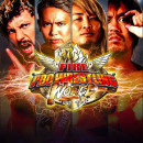 Fire Pro Wrestling World - PC