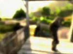 Far Cry 3 - Guide de survie n°3 (Divers)