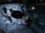 Batman : Arkham City - Robin (Teaser)