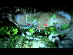 Far Cry 3 trailer - pre-order details, hang glider reveal (Teaser)