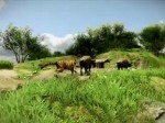 Far Cry 3 - Trailer de lancement (Gameplay)