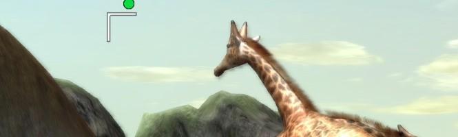Pourquoi pas un safari photo