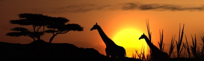 [TGS 06] Afrika toujours aussi énigmatique