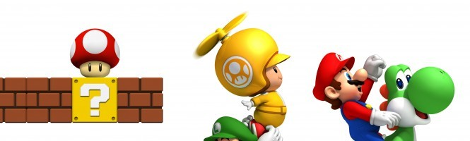 New Super Mario Bros Wii s'illustre