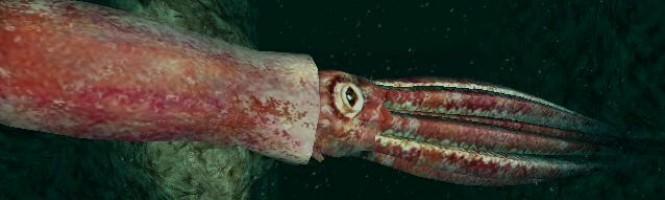 [Test] Endless Ocean 2 : aventuriers des fonds marins