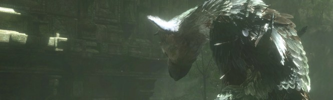 The Last Guardian en images