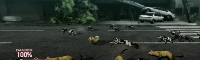 Tokyo Jungle : un nouveau trailer