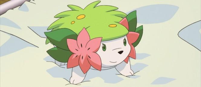 Pokémon : Shaymin actuellement offert