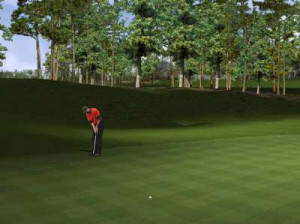 Tiger Woods PGA Tour 2002 - PC
