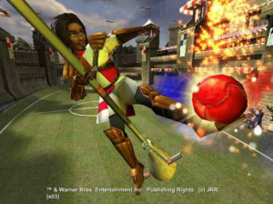 Harry Potter et la coupe du monde de Quidditch - Gamecube