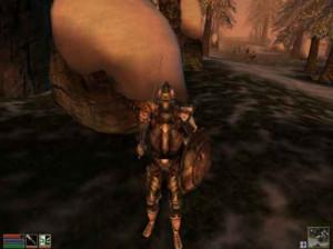 The Elder Scrolls III : Morrowind : Bloodmoon - PC