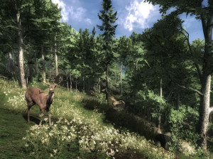 Cabela's Outdoor Adventures - PS3