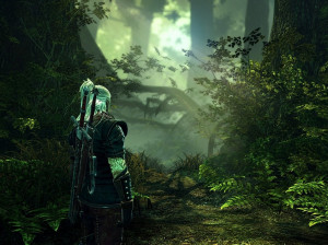 The Witcher 2 : Assassins of Kings - PC