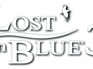 Survival Kids : Lost In Blue 3 - DS