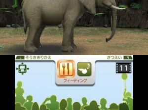 Zoo Resort 3D - 3DS
