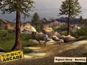 Top Shot Arcade - Wii