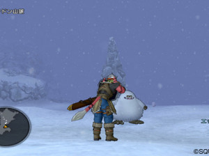 Dragon Quest X - Wii U