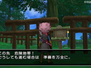 Dragon Quest X - Wii U