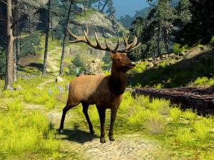 Cabela's Big Game Hunter 2010 - PS3