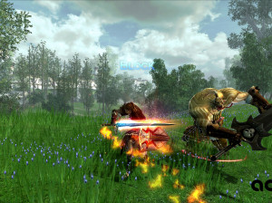 Dragon Knight Online - PC