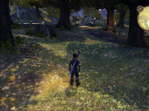 Fable : Anniversary - Xbox 360