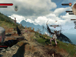 The Witcher III : Wild Hunt - PC