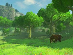 The Legend of Zelda : Breath of the Wild - Wii U