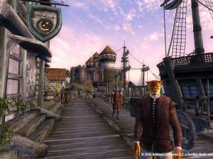 The Elder Scrolls IV : Oblivion - PC