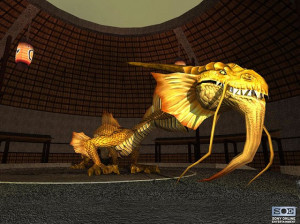 EverQuest : Dragons of Norrath - PC