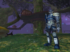 Everquest II : Echoes of Faydwer - PC