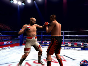 Boxing Manager - PC
