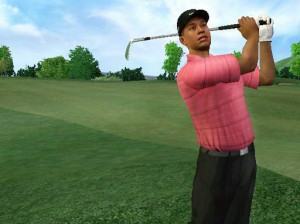 Tiger Woods PGA Tour 07 - Wii