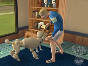 Les Sims 2 : Animaux Et Cie - Wii
