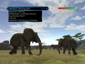 Wild Earth : African Safari - Wii