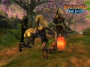 Overlord Dark Legend - Wii
