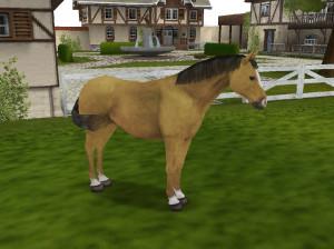Cheval & Poney : Mon Haras - Wii