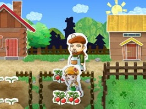 Harvest Moon : Ranch Store - Wii